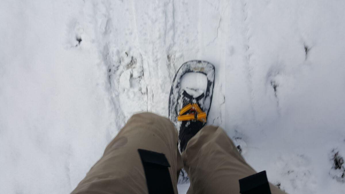 Schneeschuh-Training an der Scheinbergspitze