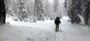 Nicolas dynamisch auf Schneeschuhen
