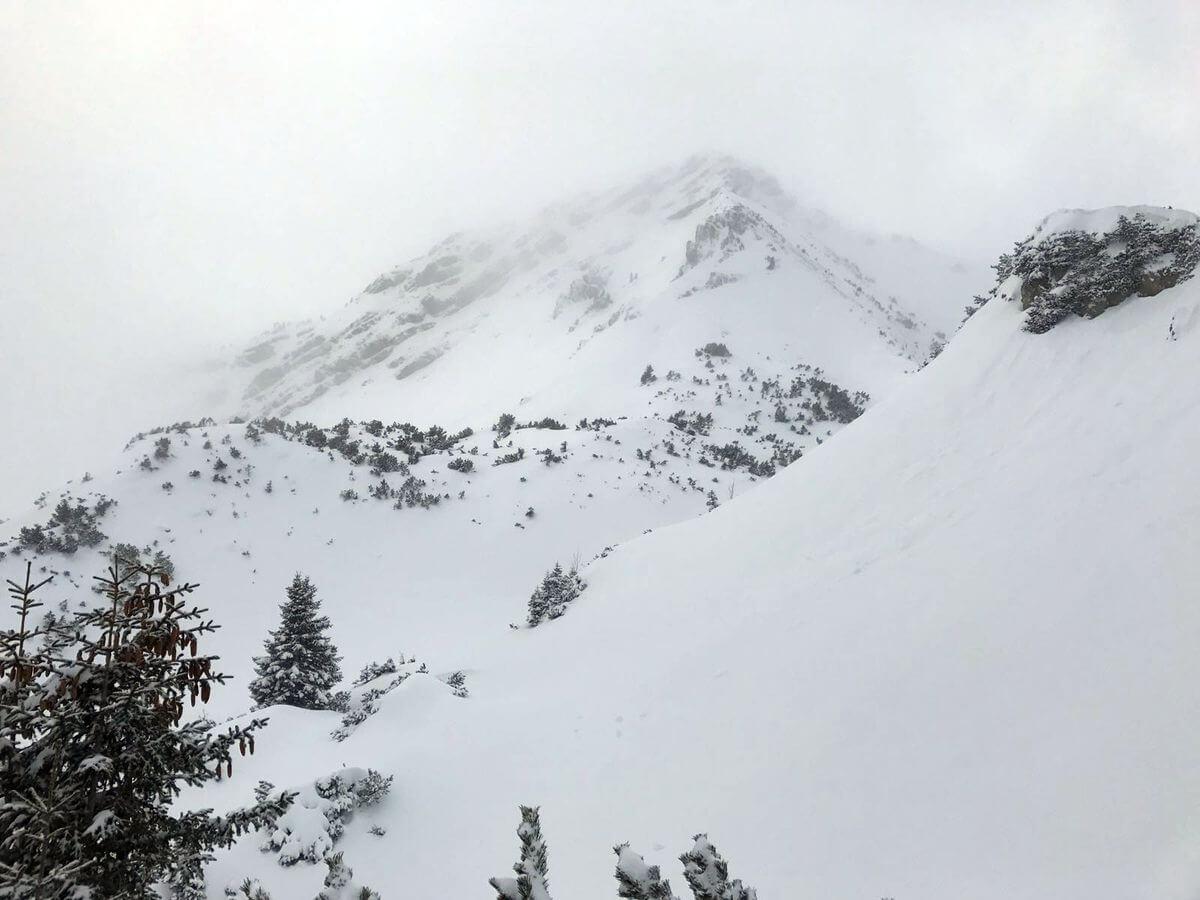 Die Scheinbergspitze