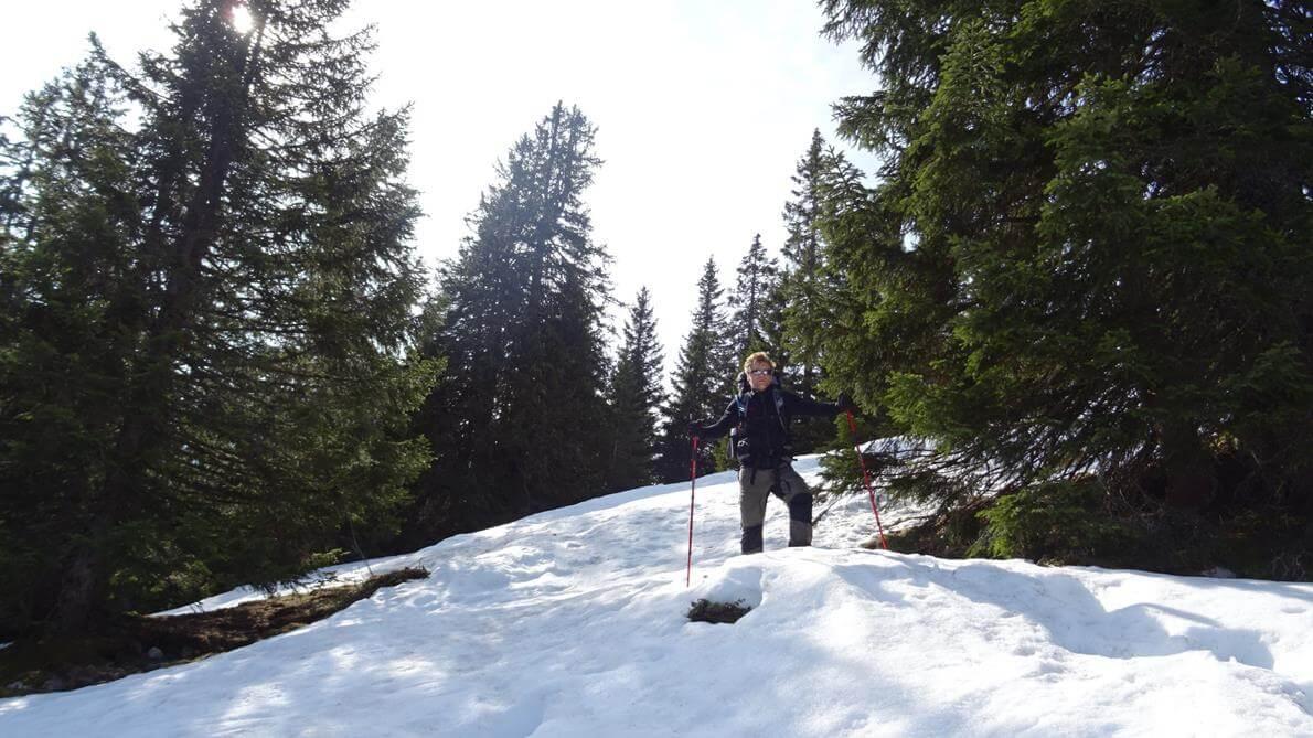 Toby auf dem Weg zur Stuibenhütte