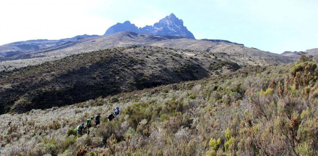 Kikelewa-Camp zur Mawenzi Tarn Hut - 7summits4help auf dem Kilimanjaro via Rongai-Route