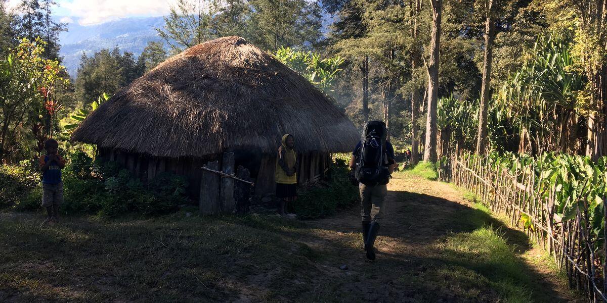 Carstensz-Expedition - Durch den Dschungel geht's hoch