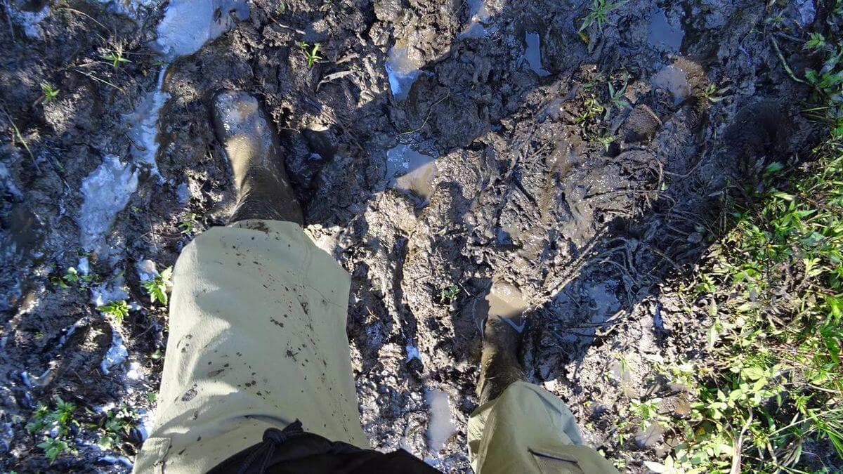 Unser Weg - Carstensz Expedition nach Papua