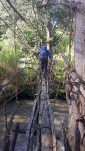 Unsere letzte Brücke
