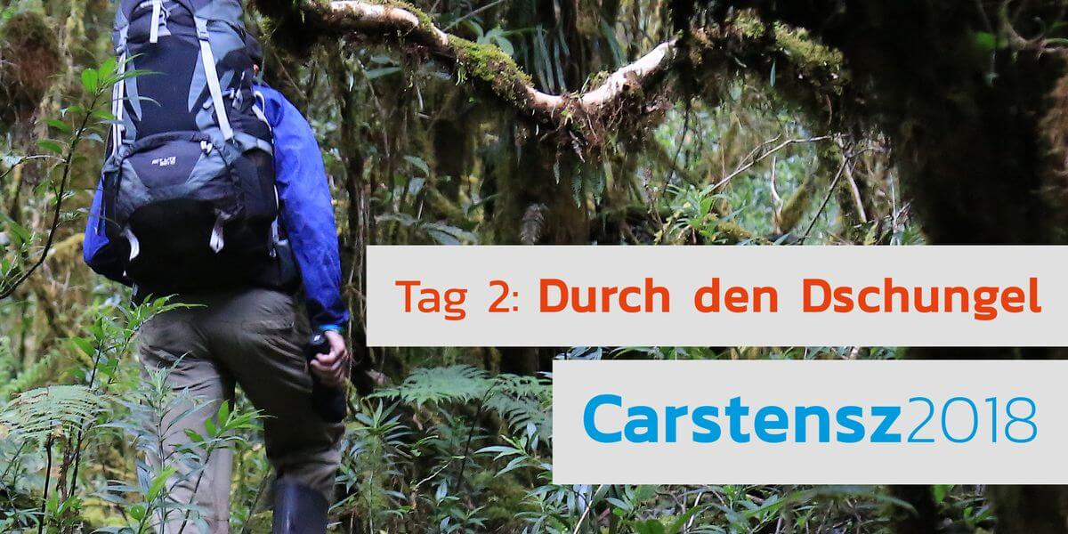 Nicolas Scheidtweiler ist im Dschungel unterwegs
